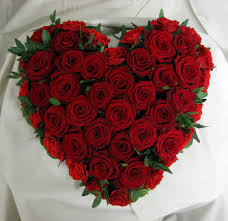 20 red roses heart