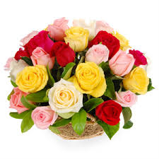 24 mix roses in a basket