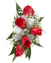 5 Red roses bouquet