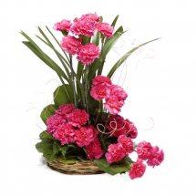 18 Pink Carnations in a basket