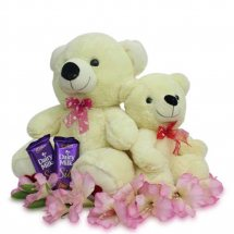 2 Teddy Bears (12 and 6 inches) with 2 Dairy Milk Chocolates