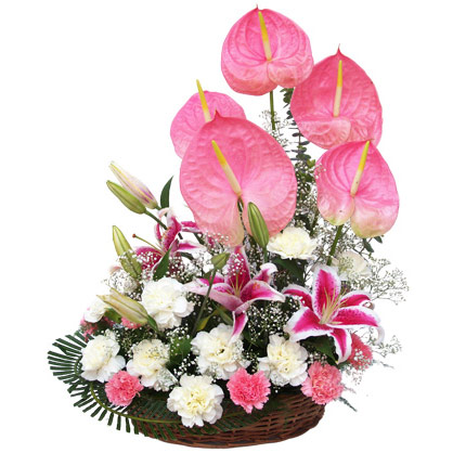 Pink+ White Carnations with Pink Anthuriums in Basket