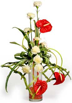 Red Anthuriums and White Carnations Basket