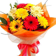 Two dozen assorted colored gerberas bouquet.