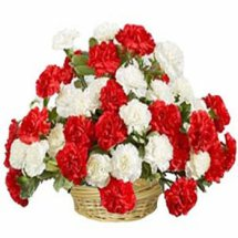30 Red and White carnations basket