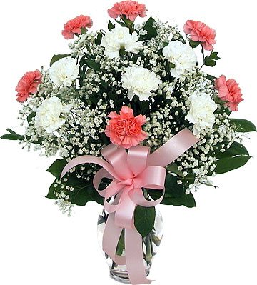 12 pink white carnations in a vase