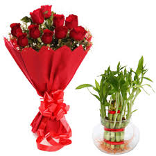 12 Red roses with red wrapping bouquet and Lucky bamboo