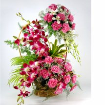 10 pink carnations on the handle of Basket with 6 Purple orchids