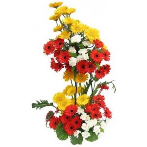 50 Gerberas 2 tier basket