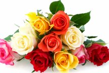8 Assorted Roses Bouquet
