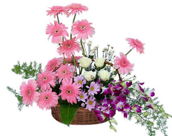 Pink Gerberas white roses + purple Orchids Basket