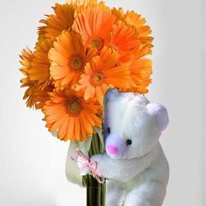Teddy + 12 orange gerberas bouquet