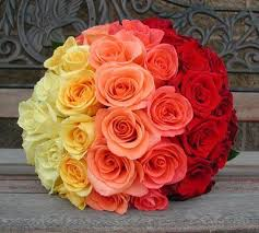 Two dozen Ombre roses in basket