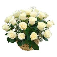 24 White roses in a basket