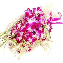 10 Purple Orchids in bouquet