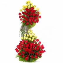 40 red yellow roses 3 to 4 feet