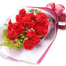2 dozen red carnations hand-tied bouquet.