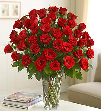 24 long stem red roses in a vase