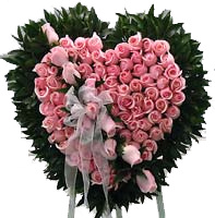 Heart shaped arrangement of 36 dozen Pink roses.