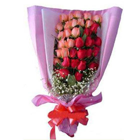 24 Pink and Red Roses Bunch