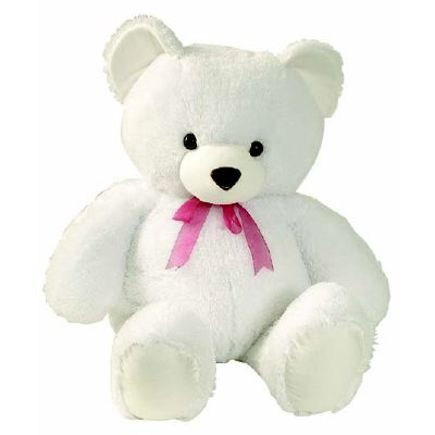 A soft and cuddly Teddy bear (8 to 10 inches).