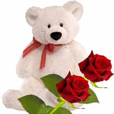 A soft and cuddly Teddy bear (8 to 10 inches) with 2 red roses
